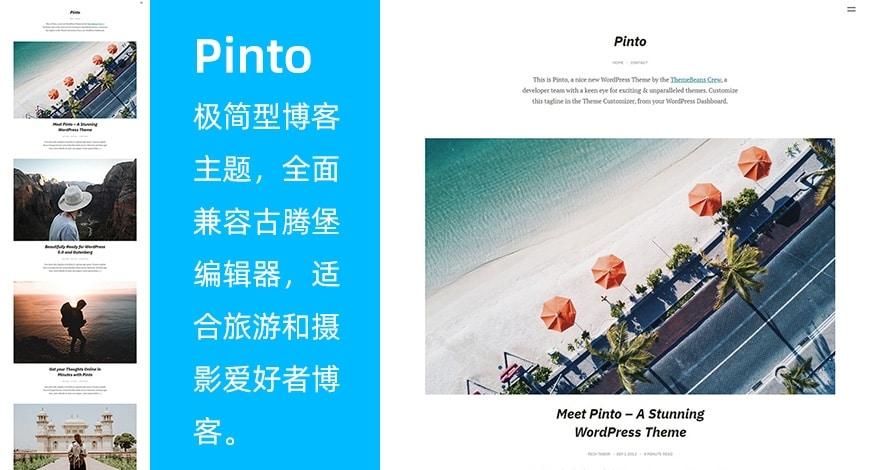 WordPress 极简博客主题 Pinto WordPress主题-第1张