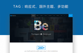 多功能响应式wordpress主题:BeTheme v16.3