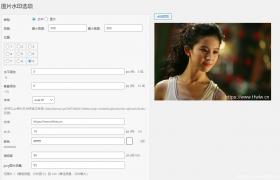 WordPress自动添加图片水印插件 – DX-Watermark 安装与设置